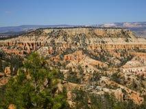 在布赖斯峡谷,犹他,美国的美丽的景色 图库摄影