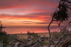 在布赖顿海滩的美好的日落 免版税库存图片