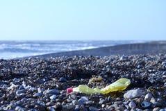 在布赖顿海滩的垃圾 免版税库存图片