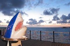 在布赖顿码头的鲨鱼雕象 免版税图库摄影