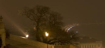 在布达佩斯城堡的树  免版税图库摄影