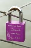 在布鲁克林大桥的爱锁 图库摄影