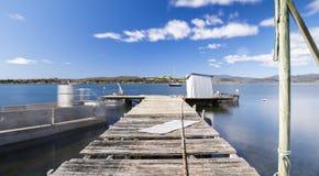 在布鲁尼岛找到的小船跳船在塔斯马尼亚,澳大利亚 库存照片