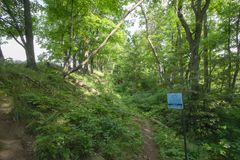 在布鲁斯内的足迹落后Splitrock狭窄 图库摄影