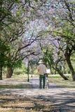 在帆布的成熟人绘画在公园 库存照片