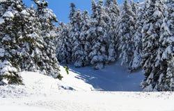 在希腊山的雪板运动 库存图片
