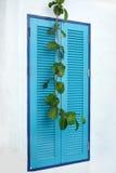 在希腊样式的蓝色窗口 免版税库存照片