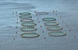 在希腊的水产养殖 免版税库存照片