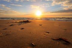 在希茨海尔斯的海滩 免版税库存照片