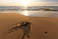 在希茨海尔斯的海滩 库存图片