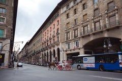 在帕尔马街道上的马支架  免版税库存图片