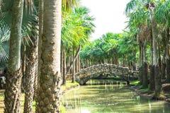 在帕米尔高原公园晃动横跨运河的桥梁 图库摄影