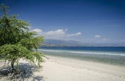 在帝力附近的Areia branca热带海滩视图在东帝汶 免版税库存图片