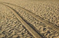 在带领入海的金黄沙子的轨道在日落 库存图片