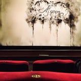 在帷幕前在布加勒斯特国家歌剧院议院上升 库存图片