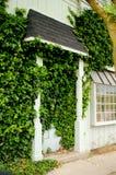 在常春藤包括的小镇存储前门 库存图片