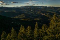 在常青树,科罗拉多的晚上 免版税库存图片
