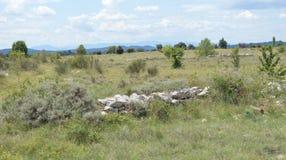 在常绿矮灌木丛法国的看法 免版税库存图片