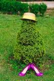 在帽子和桃红色鞋子的绿色树 库存图片