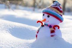 在帽子和围巾的逗人喜爱的小的雪人 免版税库存图片