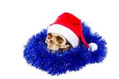 在帽子在白色背景隔绝的圣诞老人的滑稽的头骨 免版税库存图片