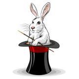 在帽子的兔子 免版税库存照片
