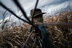 在帽子的可怕稻草人 免版税库存照片