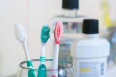 在干净的洗手间室的牙刷 牙齿的概念 图库摄影