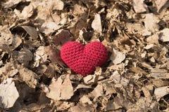 在干叶子的钩针编织的心脏 免版税库存照片