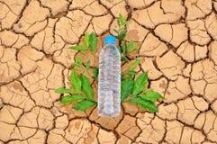 在干旱的背景的饮用水瓶 库存照片
