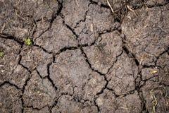 在干燥夏季的高明的土壤 免版税库存照片