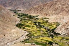 在干燥山中的绿色山谷在Leh,拉达克 库存图片