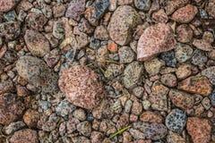 在干燥岩石的雨珠 库存图片