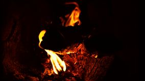 在干燥木柴的热的火在砖熔炉 股票视频