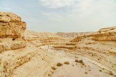 在干燥沙漠的夏天风景风景视图在以色列 库存图片