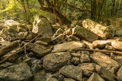 在干燥瀑布的岩石 免版税库存照片