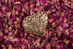 在干燥玫瑰花瓣的金黄颜色心脏 库存图片