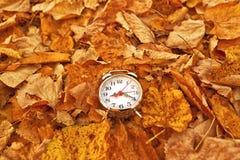 在干燥秋叶的葡萄酒闹钟 免版税库存图片
