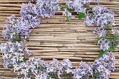 在干燥芦苇背景的淡紫色花圈 免版税图库摄影