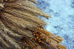 在干燥花束的麦子钉在雪 免版税库存图片
