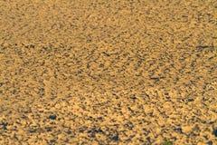 在干燥水附近的模糊的破裂的地球在后面的暮色用途 库存图片