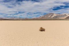 在干盐湖床上的风滚草在沙漠 免版税图库摄影