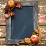 在干花和苹果框架的黑板  免版税库存照片