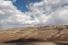 在干草原的偏僻的结构树 库存照片