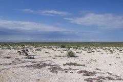 在干草原的长木凳 在长凳是旅游背包 天空蔚蓝,用小壳包括的土地,干草原草 免版税库存图片