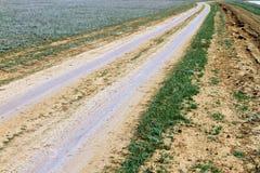 在干草原,越野驱动的未铺砌的干燥土乡下公路 免版税库存图片