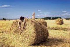 在干草堆 免版税库存图片