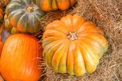 在干草的南瓜在秋天季节 免版税库存照片