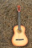 在干草的吉他 免版税库存照片