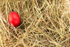 在干草的复活节彩蛋 图库摄影
